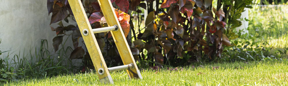 A quick guide to effective garden spring cleaning